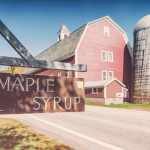 A sweet tradition: Maple syrup farms and festivals in Canada